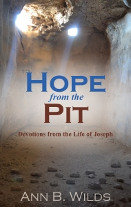 Hope from the Pit--ebook cover 2-28